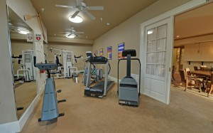 HARBOUR POINT on Lake Lanier - clubhouse gym